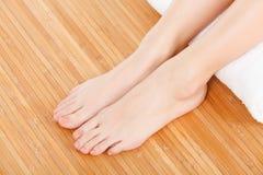 Female feet Stock Image