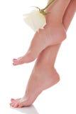 Female feet with white rose. White background Royalty Free Stock Photos