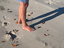 Female Feet on White Sandy Beach. Royalty Free Stock Photos