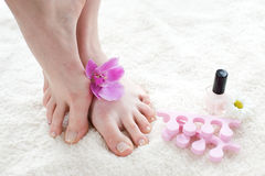 Female Feet With Pink Orchid. Royalty Free Stock Photography