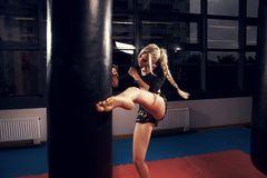 Female fighter hitting heavy bag with her leg. Gorgeous female fighter with blonde hair pulled back in long braid, dressed in black crop top and camouflage Royalty Free Stock Photography