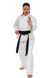 Female fighter performing karate stance Stock Images