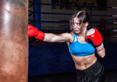 Female fighter posing in combat poses Royalty Free Stock Images
