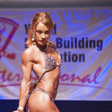 Female figure model flexes her muscles and shows her physique Royalty Free Stock Photography