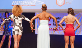 Female figure models in evening dress show their best Stock Photography