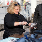 Female fish vendor. MARSEILLE,FRANCE, MARCH 6: A female fish vendor empties the stomach of a fish on the Vieux-Port Market,on Sunday, March 6th, 2011, in royalty free stock image
