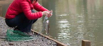 Female with a caught trout stock photo