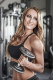 Female fitness model posing with dumbbell Royalty Free Stock Image