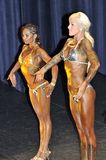 Female fitness models showing their best. ROOSENDAAL, THE NETHERLANDS - OCTOBER 19, 2014. Female contestant showing her best at the bodybuilding and fitness Royalty Free Stock Photos