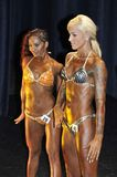 Female fitness models showing their best. ROOSENDAAL, THE NETHERLANDS - OCTOBER 19, 2014. Female contestant showing her best at the bodybuilding and fitness Royalty Free Stock Images