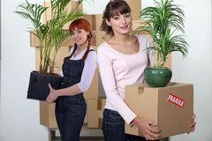 Female flatmates Stock Images