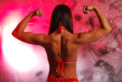 Female flex Royalty Free Stock Image