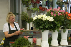 Female florist arranges flowers on the market in P. Portugal, on the historic market, Mercado do Bolhao, is a market saleswoman standing in her stall and Royalty Free Stock Photo