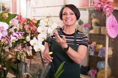 Female florist arranging a phalaenopsis Royalty Free Stock Photo
