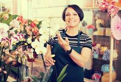 Female florist arranging a phalaenopsis Stock Image