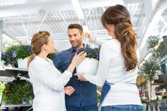 Female Florist Assisting Couple In Buying Purple Stock Photos