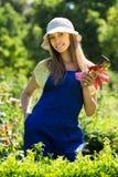 Female florist in the garden Royalty Free Stock Photos