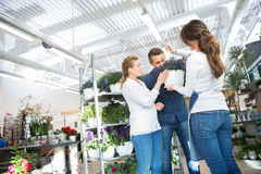 Female Florist Guiding Couple In Buying Purple Royalty Free Stock Photos