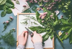 Female florist hands with scissors making floral arrangements flowers and green leaves on white tray. Top view stock images