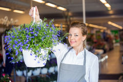 Female Florist Holding Flower Plant In Shop Stock Photo