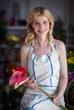 Female florist holding flowers in flower shop Stock Images