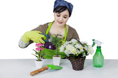 Female florist Stock Photo