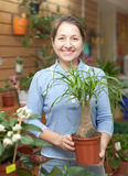 Female florist with Nolina plant Royalty Free Stock Photography