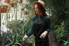 Female florist with shovel in hands Royalty Free Stock Images