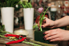 Female florist working with flowers Royalty Free Stock Photography