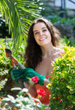 Female florist working in the garden Royalty Free Stock Photography
