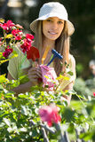 Female florist working in garden Stock Photography