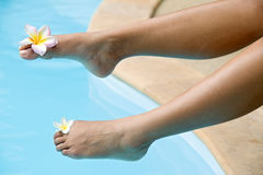 Female foot Royalty Free Stock Photo