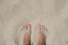 Female foot on the beach Stock Photography