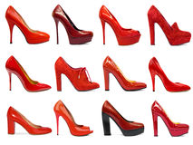 Female footwear collection-2 Royalty Free Stock Image