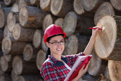 Female forest engineer beside logs Royalty Free Stock Image