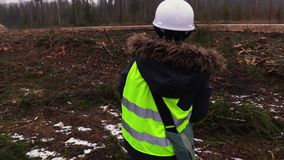 Female forestry employee in destroyed forest in snowy winter day. Near forest road stock video