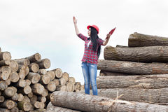 Female forestry engineer beside logs Stock Photo