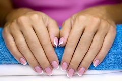 Female french manicure Stock Image