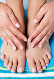 Female french manicure Royalty Free Stock Photography