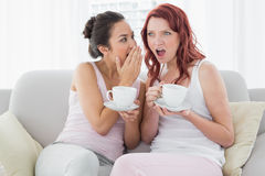 Female friends with coffee cups gossiping in living room Stock Photography