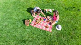 Female friends with dog having picnic in park, girls sitting on grass and eating healthy meals outdoors, aerial. View from above royalty free stock photography