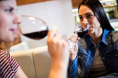 Female friends drinking red wine. Young female friends drinking red wine in bar Stock Photo