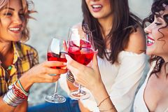 Female friends with glass of rose wine on summer beach picnic. Happy female friends with glass of rose wine on summer beach picnic royalty free stock photo