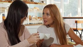 Female friends gossiping, discussing shocking news over cup of coffee. Gorgeous red haired woman looking surprised, when her friend whispering something to her stock footage