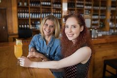 Female friends having cocktail at counter in bar. Portrait of smiling female friends having cocktail at counter in bar Stock Photo