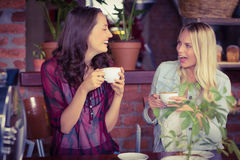 Female friends having coffee at coffee shop Stock Photography