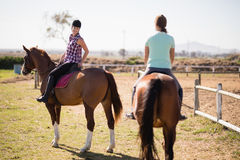 Female friends horseback riding on field. During sunny day royalty free stock images
