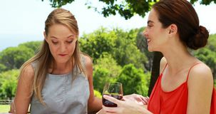 Female friends interacting with each other 4k. Female friends interacting with each other in outdoor restaurant 4k stock footage