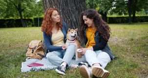 Female friends relaxing in park with adorable dog talking laughing caressing pet. Female friends beautiful young women are relaxing in park with adorable dog stock video footage