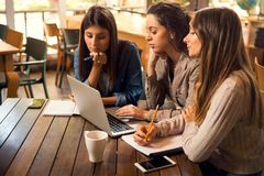 Female friends studying together stock photo